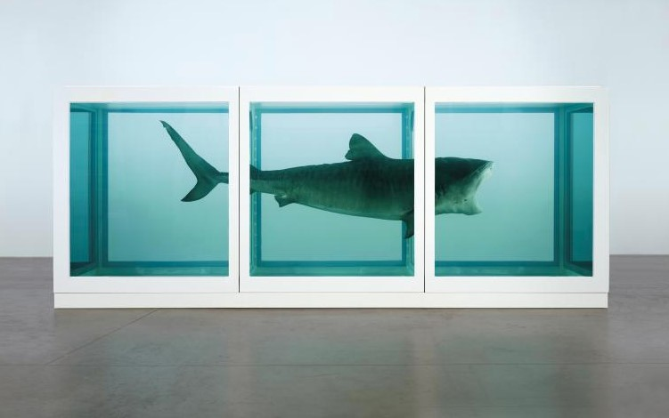 The Physical Impossibility of Death by Damien Hirst